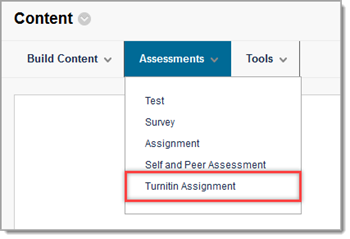 turnitin assignment