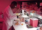 Researcher at lab bench