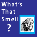 what is that smell