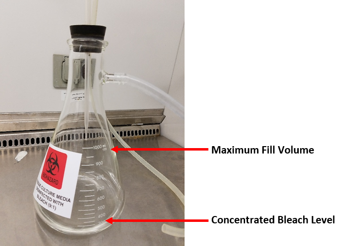 Biosafety How To Disinfect Tissue Culture Media In Vacuum