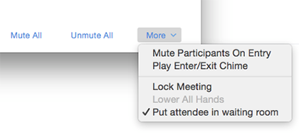 Put attendee in waiting room screen shot