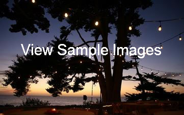 Sample images on Smugmug
